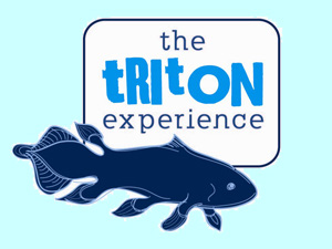 triton-dive-lodge-logo