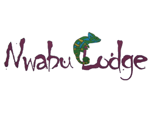 nwabu-lodge-logo